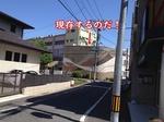 11橋本5.jpg